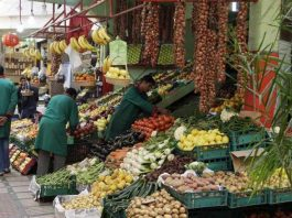 Fruits and Vegetables from Morocco