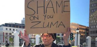 A lone protester stand outside South Africa's parliament