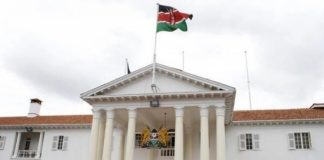 Kenyan undergraduate shot after scaling fence into state house