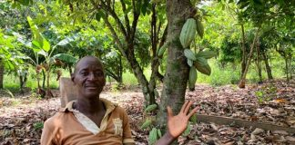 Ivory Coast, Ghana set for greater share of chocolate wealth