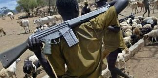 Mali moves to disarm illegal arm carriers