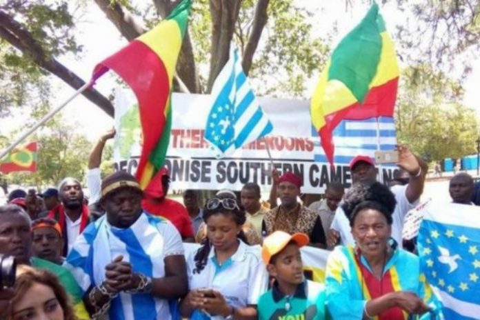 Cameroon, Ambazonia seperatists say fighting for existence