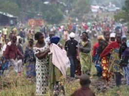 Scores of displaced people killed in northern DR Congo